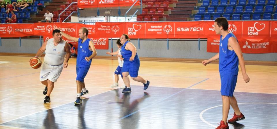 basket2_1
